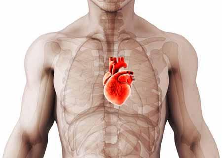concave chest blood pump problem